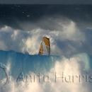 Windsurfer Between the waves - img_2844_5.jpg