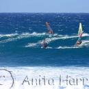 Hookipa Windsurfers - img_8397.jpg