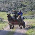 Horse and Carriage, Teton Mountains - img_3528_w.jpg